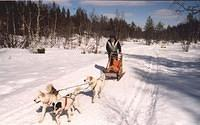 Finland Cross Country Skiing